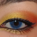 CoralAndYellowLook